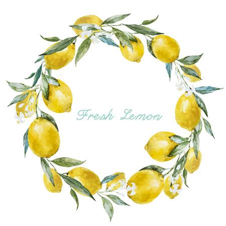 lemon: Hermoso marco acuarela vector con los limones amarillos frescos