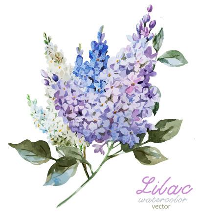 아름 다운 수채화 벡터 라일락 패턴 꽃과 잎 일러스트