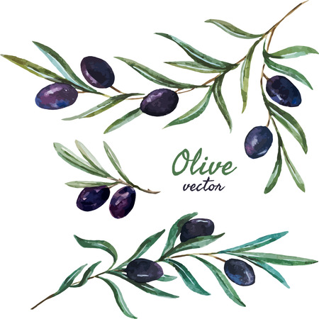 Beautiful vector pattern with tasty olives with leafs