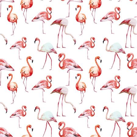 flamenco ave: Hermosa vector patrón acuarela con bonitas flamencos