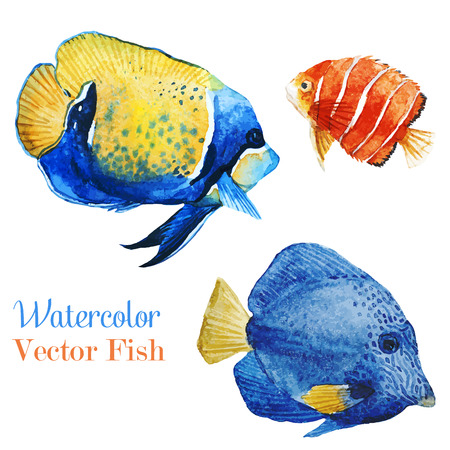 sea fish: Vector set with beautiful different watercolor fishes