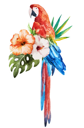 tropical bird: Beautiful vector set with nice watercolor tropical birds