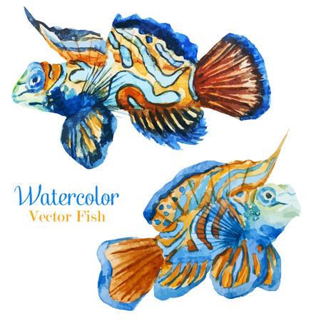 tropical fresh water fish: Vector set with beautiful different watercolor fishes