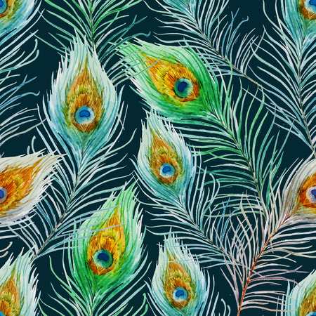 Beautiful vector pattern with nice watercolor peacock feather