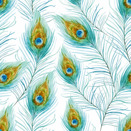 peafowl: Beautiful vector pattern with nice watercolor peacock feather