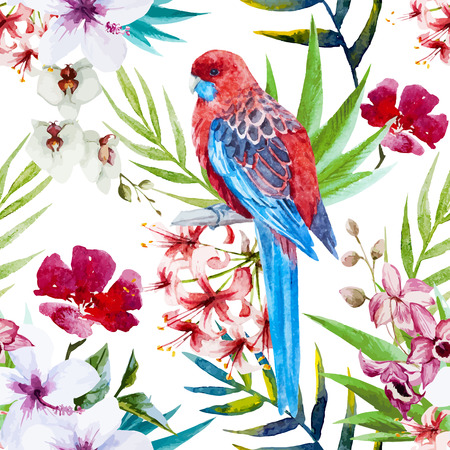 papagayo: Modelo hermoso del vector con el p�jaro de la acuarela y flores tropicales Vectores