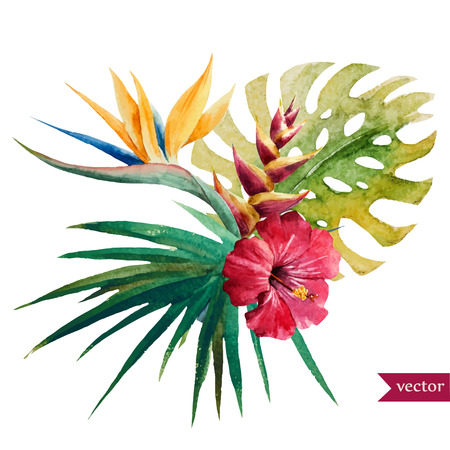 Beautiful vector illustration with nice tropical flowers Çizim