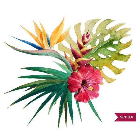 palmier: Belle illustration de vecteur avec de belles fleurs tropicales Illustration