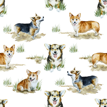 Beautiful vector pattern with nice watercolor velsh korgi pembroke Illustration