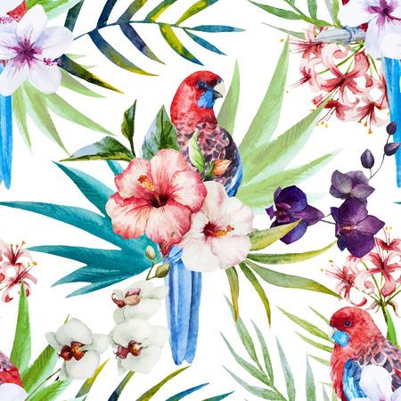 famous paintings: Beautiful vector pattern with nice watercolor rosella bird pattern Illustration