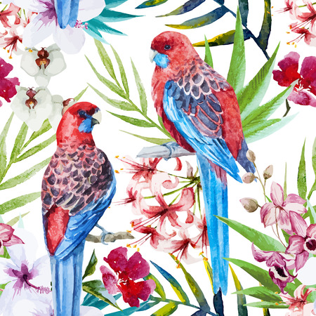 Beautiful vector pattern with nice watercolor rosella bird pattern Illusztráció