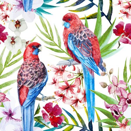 ave del paraiso: Modelo hermoso del vector con bonita acuarela patrón rosella pájaro