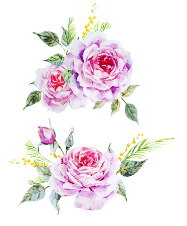 peonies: Beautiful vector image with nice watercolor roses