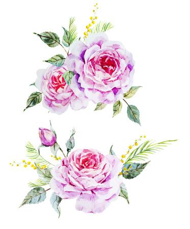 Mooie vector afbeelding met mooie waterverf van rozen Vector Illustratie