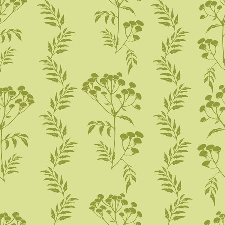 Beautiful vector pattern with nice tansy flowers Vector