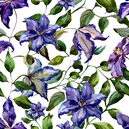 fon: Beautiful vector pattern with nice clematis flowers