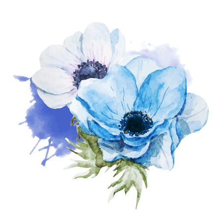 Beautiful vector image with nice watercolor anemones flowers Çizim