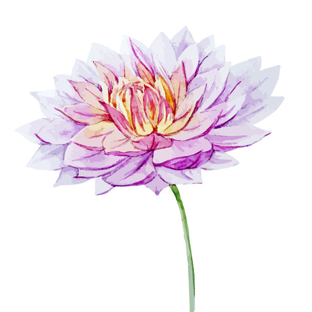 Beautiful vector image with nice watercolor dahlia flowers