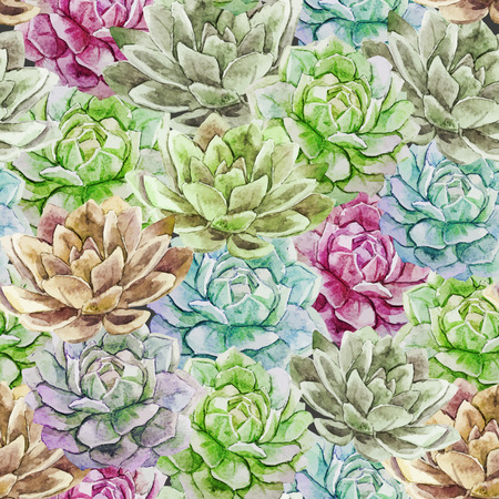 succulent: Beautiful vector pattern with nice watercolor succulent flowers