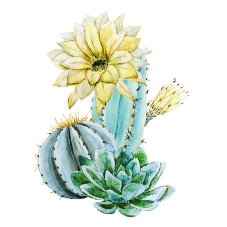 Beautiful vector image with nice watercolor cactus