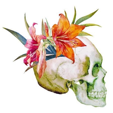 rosa negra: Imagen hermosa del vector con el cráneo de la acuarela con las flores