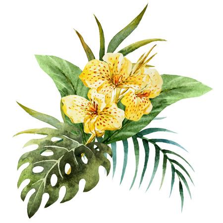 素敵な水彩画のカンナの花を持つ美しいベクトル画像  イラスト・ベクター素材