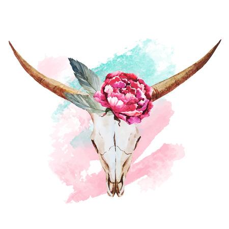 skull logo: Beautiful vector image with nice watercolor skull Illustration