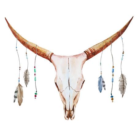 toros bravos: Imagen hermosa del vector con el cr�neo bonita acuarela Vectores