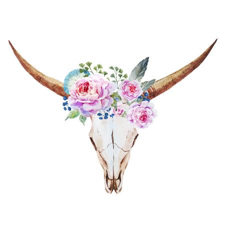 素敵な水彩画の頭蓋骨と美しいベクトル画像  イラスト・ベクター素材