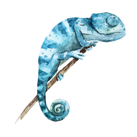 Beautiful image with nice watercolor chameleon Illusztráció