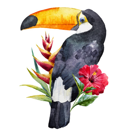 Beautiful image with nice watercolor toucan with flowers Vettoriali