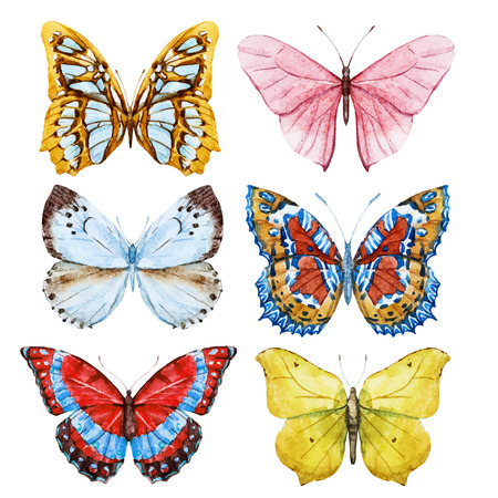 Mooi beeld met mooie aquarel vlinders Stock Illustratie