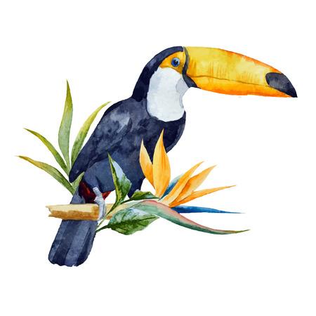 loros verdes: Hermosa imagen con buen tucán acuarela con flores