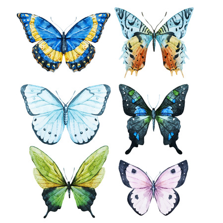 butterflies: Beautiful image with nice watercolor butterflies