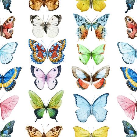 butterflies: Beautiful  pattern with nice watercolor butterflies Illustration