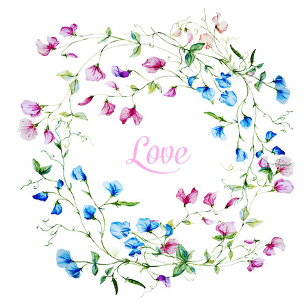 sweet pea: Beautiful vector frame with nice watercolor flowers