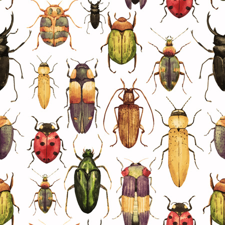 beetle: Beautiful vector pattern with nice watercolor bugs Illustration