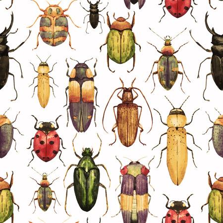 escarabajo: Modelo hermoso del vector con bonitas bichos acuarela Vectores