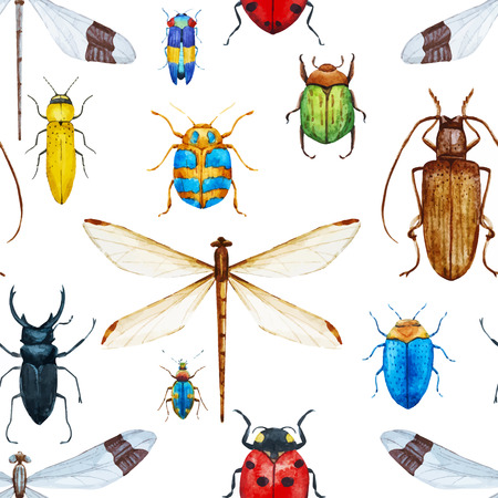 Beautiful vector pattern with nice watercolor bugs Illustration