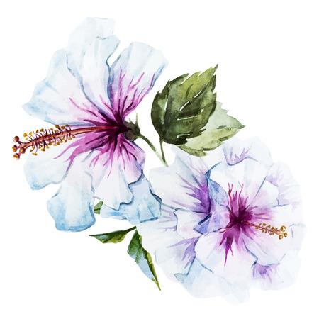 좋은 수채화 히비스커스 꽃과 함께 아름 다운 이미지