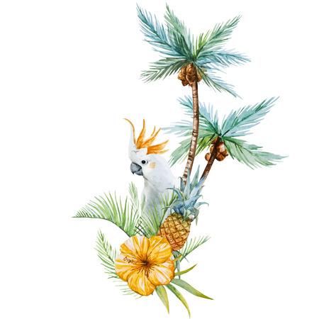 frutas tropicales: Imagen hermosa del vector con la acuarela bonita palmera tropical