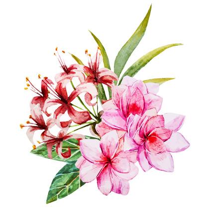 tropicale: Belle image vectorielle avec de belles fleurs à l'aquarelle tropicales Illustration