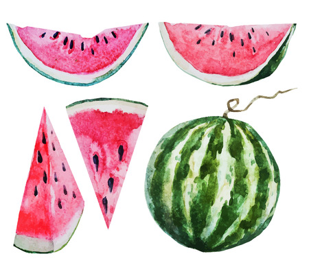 Beautiful vector image with nice watercolor watermelon Vettoriali
