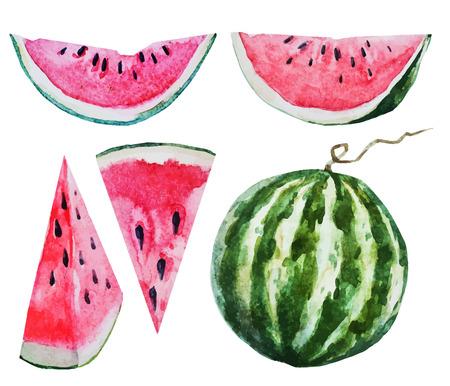 Mooie vector afbeelding met mooie waterverf van watermeloen
