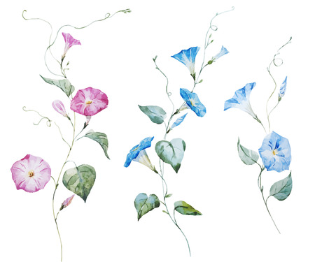 watercolor pen: Beautiful vector image with gentle watercolor flowers