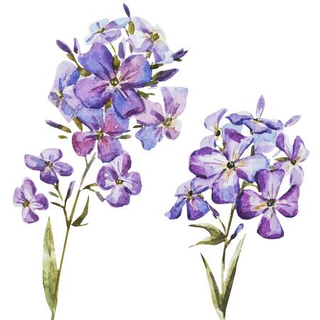 素敵な水彩画花の美しいベクター画像