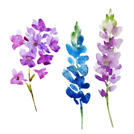 Beautiful vector image with nice watercolor flowers