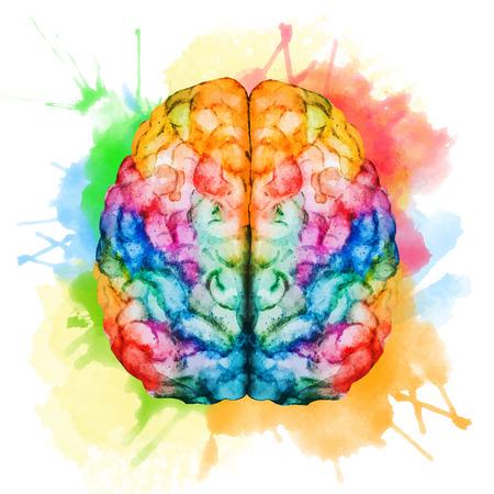 mente: Imagen hermosa del vector con buen cerebro acuarela Vectores