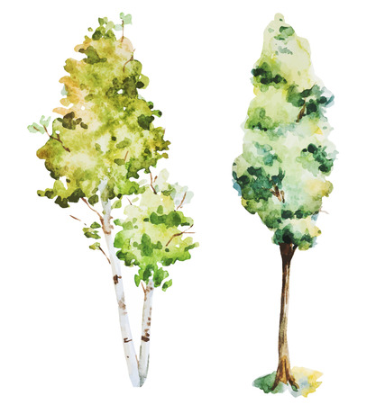 grove: Beautiful vector image with nice watercolor trees Illustration