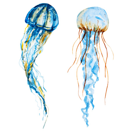 Beautiful image with nice watercolor jellyfish
